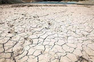 تصویر از مستند خشکسیلی