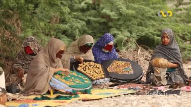 تصویر از مستند همسفر – صنایع دستی میناب